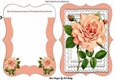 Pretty peach rose on layered lace bracket card on Craftsuprint designed by Nick Bowley - Pretty peach rose on layered lace bracket card, with insert, lots of other floral designs to see - Now available for download!