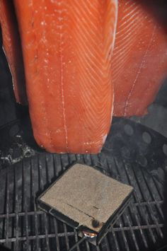 Lachsfilets im Rauch Kaltgeräucherte Lachsfilets - Räucherlachs selber machen-räucherlachs selber machen-Raeucherlachs07