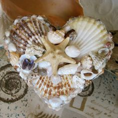 Starfish and Seashell Jewelry Box Heart Shell by Shellestial, $72.00