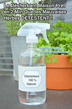 Certes, les désherbants du commerce sont efficaces mais ils sont littéralement bourrés de produits chimiques. Heureusement, il existe une alternative 100 % naturelle et à l'efficacité prouvée pour éliminer les mauvaises herbes de votre jardin. Découvrez l'astuce ici : http://www.comment-economiser.fr/desherbant-maison-pret-2-min-que-mauvaises-herbes-detestent.html?utm_content=buffer6cd95&utm_medium=social&utm_source=pinterest.com&utm_campaign=buffer
