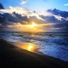We are just going to leave this here for you. Happy Friday Everyone!!❤ 📷: Jackie Young    #HappyFriday #TGIF #StGeorgeIslandFL #RVPSGI #Apalachicola #Travel #VisitFL #SGI #GulfofMexico #stgeorgeisland #familytravel #beach #beachlife #gulfcoast #lovefl #saltlife #coastal #beachdreams #islandlife #oysters #beachlover #Beautiful #forgottenCoast    #Regram via @B6D0HMhAaz- Vacation Resorts, Gulf Of Mexico, Island Life, Tgif, Happy Friday, Oysters, Family Travel, Coastal, Sunrise