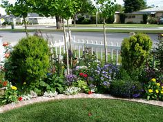 garden pictures, share yours (grow, Lilacs, trees, front yard) - Trees, Grass, Lawn, Flowers, Irrigation, Landscaping... - City-Data Forum