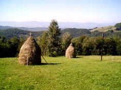 Für Landschaftsromantiker und für Entdecker - Wanderurlaub in #Transsylvanien 2015! Aktiv, Wonderful Places, Romania, Golf Courses, Country, Plants, Bucharest, Hiking, Landscape