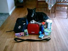 How To Make A Go Kit For Your Pets. A Go Kit is a mini survival kit for your pet in case disaster should strike.