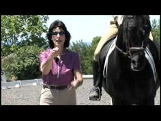Dressage Trainer Jane Savoie's Happy Horse Home Study Course Tips On Contact - YouTube