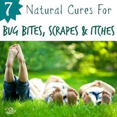 7 Natural Cures for Bug Bites, Scrapes and Itches -- You Won't Believe #5! http://thestir.cafemom.com/big_kid/174690/7_natural_treatments_for_bug?utm_medium=sm&utm_source=pinterest&utm_content=thestir&newsletter