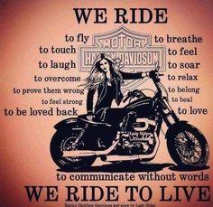 Motorcycle Quotes, My Ride, Harley Davidson, Funny, Humor, Feelings, Biker, Words, Girl Stuff