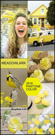 '' Meadowlark - 2018 Pantone Color '' by Reyhan S.D.
