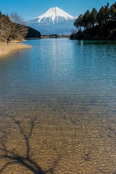 Early spring | Japan 2015 Flickr - Photo Sharing!
