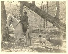 Official FNS photo, Frontier Nursing Service, Mrs Mary Breckinridge with her dogs