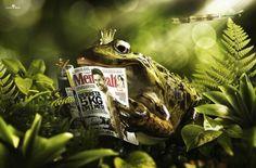 Mens Health: Real Mens world, Frog Prince