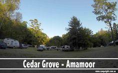 Cedar Grove | 5 Campfire friendly Campgrounds near Brisbane