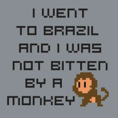 I Went to Brazil and I Was Not Bitten By a Monkey