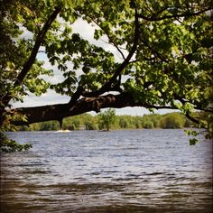 Kinderhook Lake, summers for many years...good and bad memories!