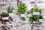 Vertibloom Living Wall Garden Starter Kit - Modular Indoor Vertical Planter System INSTALLS IN SECONDS Get your wall planters up with just a click!