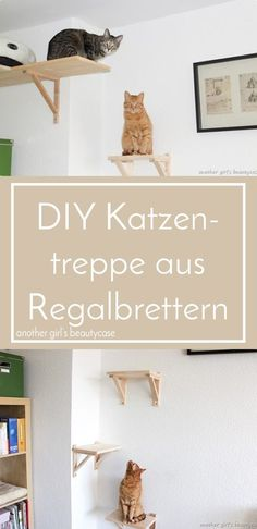 Katzentreppe aus Regalbrettern selbst bauen - IKEA Hack