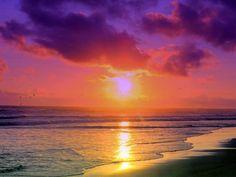 florida beaches - Google Search