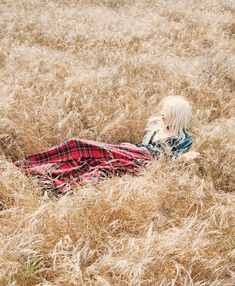 lying in a cornfield