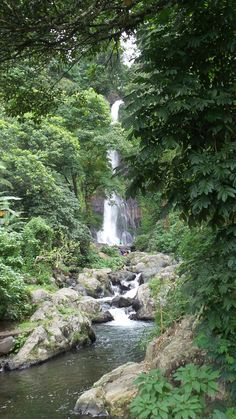 Lots of waterfalls to explore in Bali, this one is Git Git Waterfalls. Stuff To Do, Things To Do, Waterfalls, Bali, Explore, Outdoor, Things To Make, Outdoors, Outdoor Games