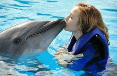 (€85 Niños – €130 Adultos) Te ofrecemos 3 alternativas diferentes para que puedas disfrutar de estos maravillosos seres tú y tu familia. A continuación los detalles de cada una: NADO SPLASH En el programa de nado con delfines Splash, tú y tu familia, tendrán la oportunidad de recibir todo el cariño de estos tiernos yLeer Más