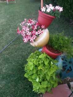 Beautiful pots to contrast the flowers! The Amazing Plant ... on Amazing Plant Stand Ideas  id=55291