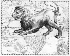 """Leo the lion. An ancient constellation of the Zodiac, this engraving comes from the 17th century star atlas Uranographia by Johannes Hevelius.  ©Mona Evans, """"Cats in the Sky"""" http://www.bellaonline.com/articles/art23214.asp"""