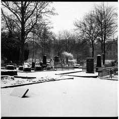 "https://flic.kr/p/u4JK8j | Graveyard in Malmö | December 2014. This is how it looks the graveyard in Malmö city center. I love it!  <a href=""http://www.gianlucalabrunaphotography.com"" rel=""nofollow"">www.gianlucalabrunaphotography.com</a>"