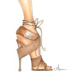 Anum T shoe illustration