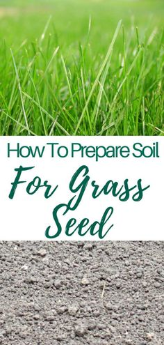 HOW TO PREPARE SOIL FOR GRASS SEED - Growing a healthy lawn from scratch requires a healthy soil. Success or failure is strongly tied to the way you get the soil ready for seeding. Heres how to prepare soil for grass seed. Growing Grass From Seed, Planting Grass Seed, Garden Soil, Lawn And Garden, How To Grow Grass, How To Plant Grass, Herbs Garden, Organic Gardening, Gardening Tips