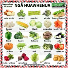 Ngā Huawhenua (The vegetables in Māori) Sometimes you will see huawhenua written as two words: Hua whenua hua = (verb) to bear fruit, originate, to flower whenua = land So huawhenua is to bear frui… Maori Songs, Name Of Vegetables, Waitangi Day, Maori Symbols, New Zealand Tattoo, Samoan Tribal Tattoos, Early Childhood Activities, Types Of Fruit, Kiwiana