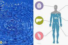 10 signes vous informent que votre corps a besoin de plus d'eau