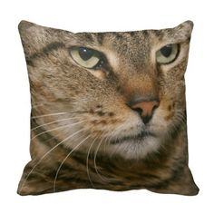 BROWN TABBY PILLOW