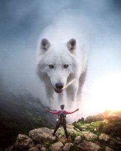 Image in Admin's images album Giant Animals, Big Animals, Anime Animals, Animals And Pets, Nature Animals, Viking Pictures, Lion Pictures, Photomontage, Image Lion