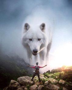 Image in Admin's images album Giant Animals, Big Animals, Anime Animals, Animals And Pets, Nature Animals, Photomontage, Image Lion, Lion Wallpaper, Lion Pictures
