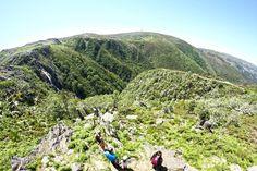 Trilho da Frecha da Mizarela (PR7) | Portugal Mountains, Nature, Free, Travel, Pedestrian, Railings, Reciprocating Saw Blades, Viajes, The World