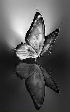 i Phone dark wallpapers Pencil Drawings Of Flowers, Cool Art Drawings, Pencil Art Drawings, Art Drawings Sketches, Animal Drawings, Butterfly Sketch, Butterfly Tattoo Designs, Butterfly Art, Butterfly Wallpaper