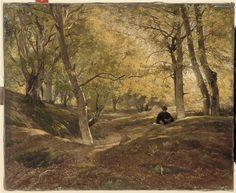 Constant Dutilleux | Hêtraie dans la forêt de Fontainebleau | Images d'Art