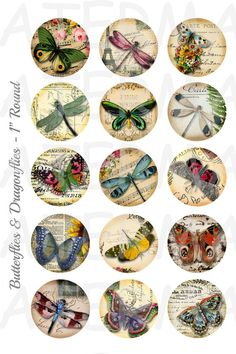 Butterflies and Dragonflies - 4 x 6 Digital Collage Sheet  - 1 inch Round Circles - INSTANT DOWNLOAD