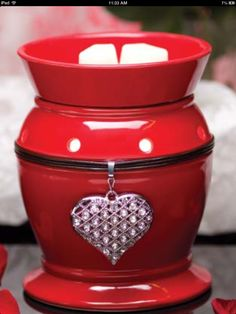 www.gulfcoastscentsations.scentsy.us  Contact: Leslie Adkinson, Independent Consultant, gcscentsations@gmail.com  Feb. Warmer of the month!! If you have never tried Scentsy home fragrances.... You simply MUST!!!