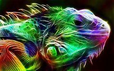 Tutto triste, il camaleonte si rese conto che, per conoscere il suo vero colore, doveva posarsi sul vuoto. A. Jodorowsky