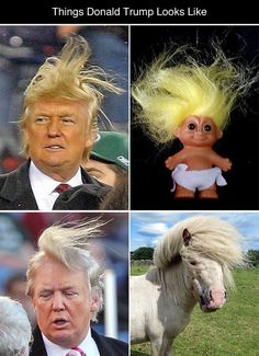 Things Donald Trump Looks Like (photos via eatliver) Related: Mattresses That Look LIke Celebrities Twitter Quotes Funny, Funny Memes Images, Funny Picture Jokes, Crazy Funny Memes, Really Funny Memes, Stupid Funny Memes, Funny Relatable Memes, Funny Tweets, Funny Photos