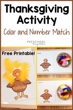A Thanksgiving activity that's perfect for preschool! Check out this Montessori-inspired turkey color and number match. There's even a FREE PRINTABLE for the turkey cards! Your kids will have a blast practicing their foundational math and science skills in a hands-on way. Fall Preschool Activities, Science Experiments For Preschoolers, Thanksgiving Activities For Kids, Number Activities, Toddler Learning Activities, Preschool Science, Montessori Activities, Thanksgiving Crafts, Literacy Programs