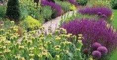 Garden with yellow and reddish-purple flowers (allium & salvia?) -- landscape design: Tom Stuart-Smith -- photo: Andrew Lawson