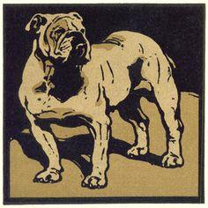 NICHOLSON (WILLIAM) WAUGH (ARTHUR) The Square Book of Animals
