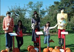 Okay, I'm so doing this for Teen Scene-- having a Scarecrow Competition amongst the teens!