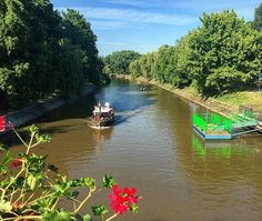 #laivindur #timisoara #banat #transilvania #transylvania #romania #bega #flowers #river #channel #water #boat #boatride #boatrides #follow4followback #followforfollowback #followers #trees #greentrees #ponton #smallboat #walk #beautifulplaces #beautifulplanet #beautifulplaces #beautifulplacesonearth