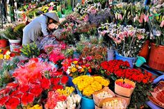 Chợ hoa Đà Lạt ~ Các địa điểm du lịch sapa