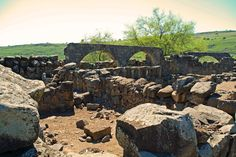 If you're heading north, you won't want to miss Korazim National Park, a 25-acre attraction known for its archaeological ruins. The site boasts a beautiful synagogue that dates back to the fourth or fifth century. Check out all the stunning, elaborate carvings and the unique sculpture of a pair of lions. The structures are built from basalt, a black volcanic rock common to the region.