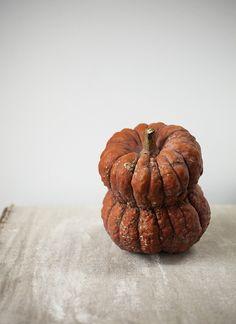 Repinned: pumpkins
