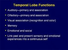 I have temporal lobe epilepsy which means the listed are affected with each seizure